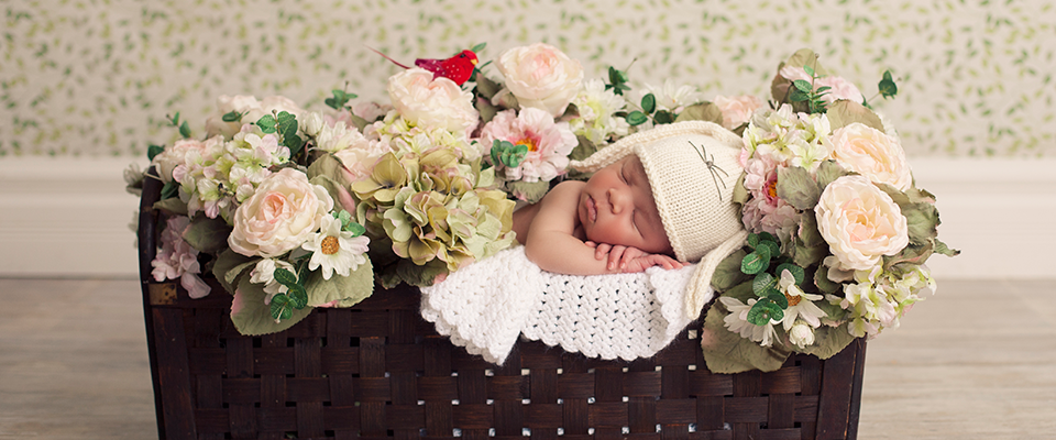 freshshoot :: michi :: sheboygan newborn photographer