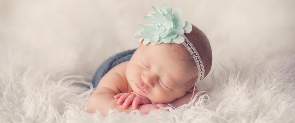 freshshoot :: vayda :: sheboygan newborn and family photographer